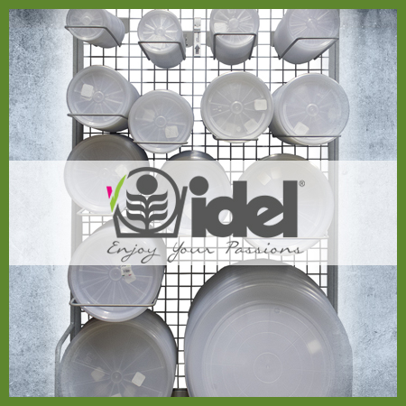 Idel clear saucers