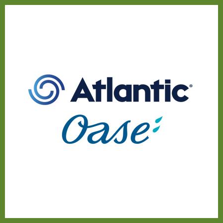 Atlantic/oase