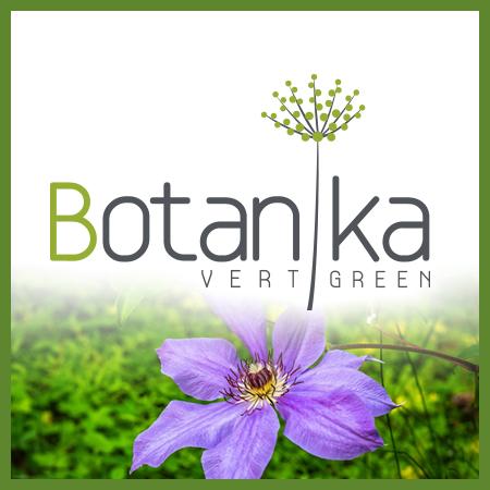 Botanika - cristaux solubles